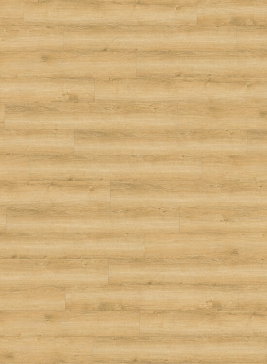 wineo 800 wood, vinyl Landhausdiele | Wheat Golden Oak